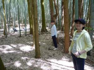 竹林の中でのヨガをサポート