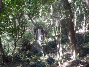厳かな「山ノ神」の森の一つ