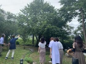 フローラハウス内の菩提樹の木について説明